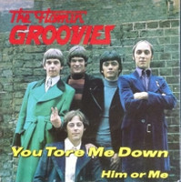 FLAMIN' GROOVIES,  - You Tore Me Down / Him or Me\ RED VINYL W. PIC SLV  45 RPM