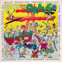 BACK FROM THE GRAVE - Vol 5 - GATEFOLD - 16 Crazed Bone Crunchin' Mid-60s Garage Punkers! - COMP LP