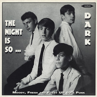 NIGHT IS SO DARK  - VA (rare US 60's punk garage w insert!) COMP LP