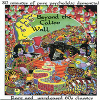 BEYOND THE CALICO WALL - V/A  LAST PRESSING of classic 60s psych! COMP LP
