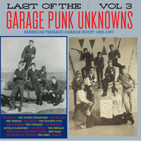 LAST OF THE GARAGE PUNK UNKNOWNS VOL 3  (15 prime slabs of mid-'60s USA garage punk aceness) GATEFOLD  COMP LP