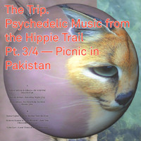 Trip #3  - Psychedelic Music From The Hippie Trail Pt. 3/4 - Picnic In Pakistan COMP  LP