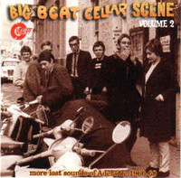 BIG BEAT CELLAR SCENE VOL 2  - LOST SOUNDS OF ADELAIDE 1965-1970-  COMP CD