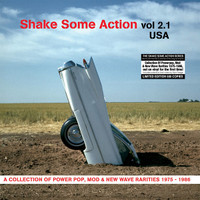 SHAKE SOME ACTION  - Vol 2.1 (rare 70s  power-pop, mod, and new wave singles )COMP LP