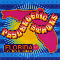 PSYCHEDELIC STATES  - FLORIDA In The 60's VOL 2-  COMP CD