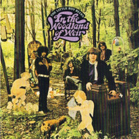 LITTLE BOY BLUES-In The Woodland Of Weir (60s acid rock)CD