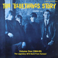 BLUE THINGS, THE  - Blue Things Story Volume One -180 GRAM DOUBLE LP