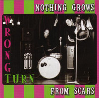 WRONG TURN  -NOTHING GROWS FROM SCARS (ex-Freeloaders, Lords of Gravity, Philisteins) CD