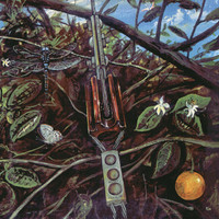 DRAGONFLY (USA) -ST  (60s Calif heavy psych Blue Cheer style)  gatefol   LP