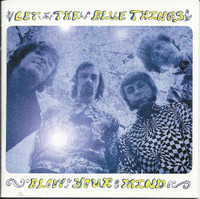 BLUE THINGS - Let The Blues Things Blow your Mind - W BOOKLET  liners, photos ( dbl cd  60s garage psych DBL  CD