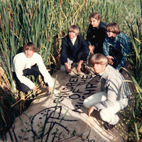 CHILDREN OF THE MUSHROOM  - ST  ( Rare garage 60s psych  Fold-out colour insert with liner notes, interview with the band members, and rare photos. ) -  CD