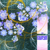 PAISLEY POLKA DOT PICNIC PARTY - VA (garage psych from the Medway scene)COMP CD