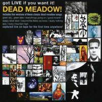 DEAD MEADOW/ BRIAN JONESTOWN MASSACRE  -  Got Live if you want it... last copies  CD