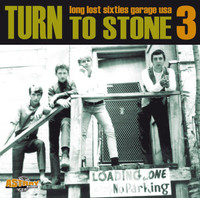 TURN TO STONE VOl 3 - Rare 60s garage LTd ed of 400 -  COMP LP