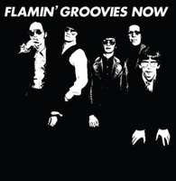 FLAMIN GROOVIES  - Now (DAVE EDMUNDS PRODUCED, 1978)180 GRAM LP