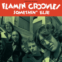 FLAMIN GROOVIES  - Something Else  PIC SLV -  45 RPM