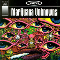 MARIJUANA UNKNOWNS - VA (60s STONER songs about pot!) COMPLP
