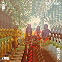 THOSE SHOCKING SHAKING DAYS -Indonesian  Psych, Prog Rock &Funk: 1970-1978 -   COMPLP