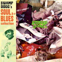 SWAMP DOGG - Gag a Maggott - Soul & Blues Collection #3 - w/ new liner notes by Swamp - digipack CD