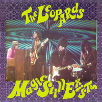 LEOPARDS   - Magic Still Exists - (Repress of the orig 1987 Kinks-style garage release ) GREEN   LP