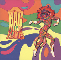 BAG FULL OF FLAMES -VA (obscure 60s psych w. liners by Mike Stax)180 gram COMPLP