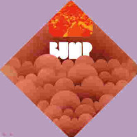 BUMP -ST - 1971 (Detroit Stooges/MC5  psych style) Ltd Ed LP