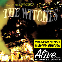 WITCHES, THE - Haunted Person's Guide To(ltd ed yellow) great psych! LAST COPIESLP