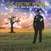 ELECTRIC ASYLUM - Vol 5  (60s rare British Freakrock  ) IMPORT   COMPCD