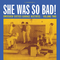 GARAGE ACETATES  VOL 2 -She Was So Bad - 1964-67 GARAGE KILLERS  - COMPLP