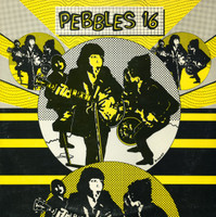 PEBBLES - Vol 16 -( 60s garage and psych ) LAST COPIES -  COMPLP
