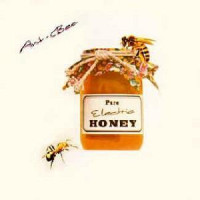 ANT BEE - Pure Electric Honey ( Pink Floyd meets Brian Wilson )- LP