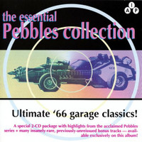 ESSENTIAL PEBBLES Vol. 1 ( 60s Garage ) - Double Comp CD