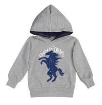 Southwestern Celestial Pony Hoodie