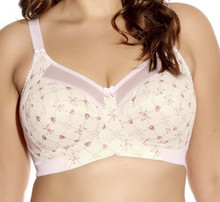 GD6163 Kayla Rose Trellis Soft Cup