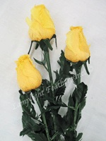 feather-roses-yellow.jpg