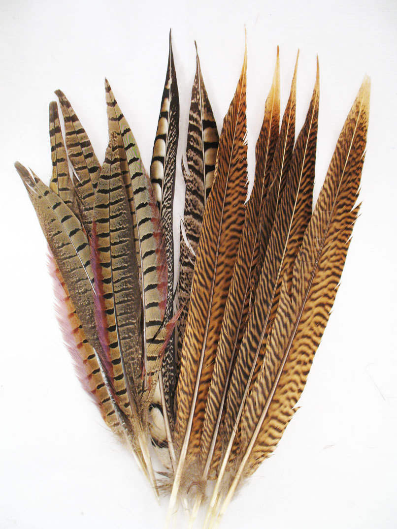 pheasant-tail-feathers-decorator-mix-10-15-inch-48718.1429650438.1280.1280.jpg