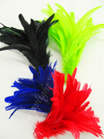 rooster-coque-feathers.jpg
