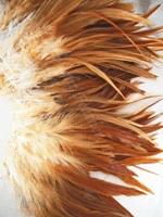 rooster-feathers-natural-strung.jpg