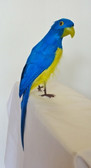 Parrot Decorative Artificial Bird, Blue-Gold, 12 inch, per each