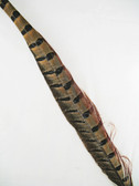 PHEASANT TAIL FEATHERS, RING-NECKED, 20-25 inch