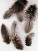 GUINEA PLUMAGE, loose, BROWN, per half ounce