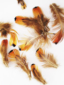 CRAFT FEATHERS, ring-necked pheasant, MIX, per .25 ounce