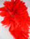 ROOSTER FEATHER SCHLAPPEN,  RED, 3-5 inch, per FOOT
