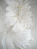 Rooster Feathers Schlappen, short, White, 3-5 inch, per FOOT