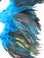 ROOSTER FEATHER SCHLAPPEN,half bronze, dyed TURQUOISE, per FOOT