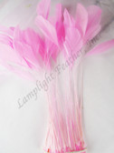 STRIPPED COQUE Feathers, CANDY PINK