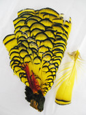 TIPPET CAPE, LADY AMHERST PHEASANT, dyed YELLOW
