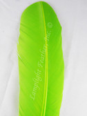 WING QUILL FEATHERS, turkey rounds, dyed LIME, per DOZEN