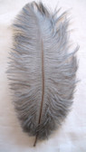 OSTRICH FEATHERS, MINI, GRAY, per 4