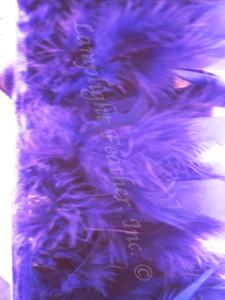 CHANDELLE Feather Trim, PREMIUM, PURPLE, per yard